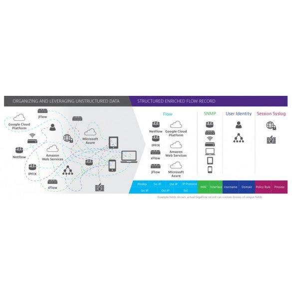 Flow monitoring - Viavi Gigaflow